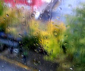 Воронежцев ждут теплые и дождливые выходные