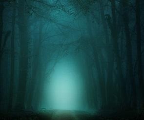 Стали известны причины ночного смога не левом берегу Воронежа