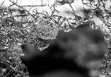 На воронежской трассе столкнулись КамАЗ и иномарка: погиб 64-летний мужчина
