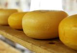 В Воронежскую область завезли более тонны контрафактного сыра