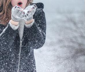 Настоящая зима придет в Воронеж и область не раньше декабря
