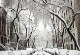 Стало известно, когда в Воронеже ударят морозы