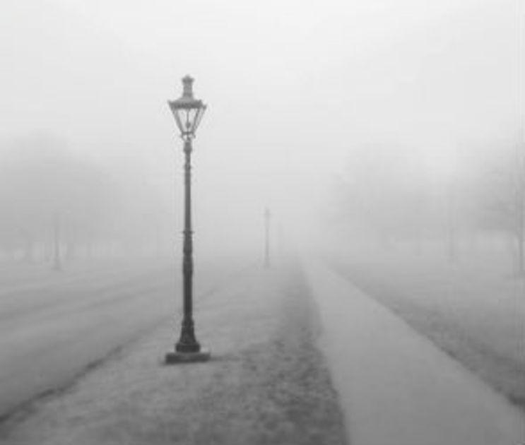 Туман, морось и мороз обещают синоптики на рабочей неделе в Воронеже