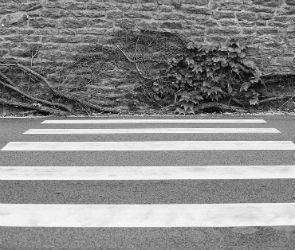 В центре Воронежа автоледи сбила 9-летнюю девочку
