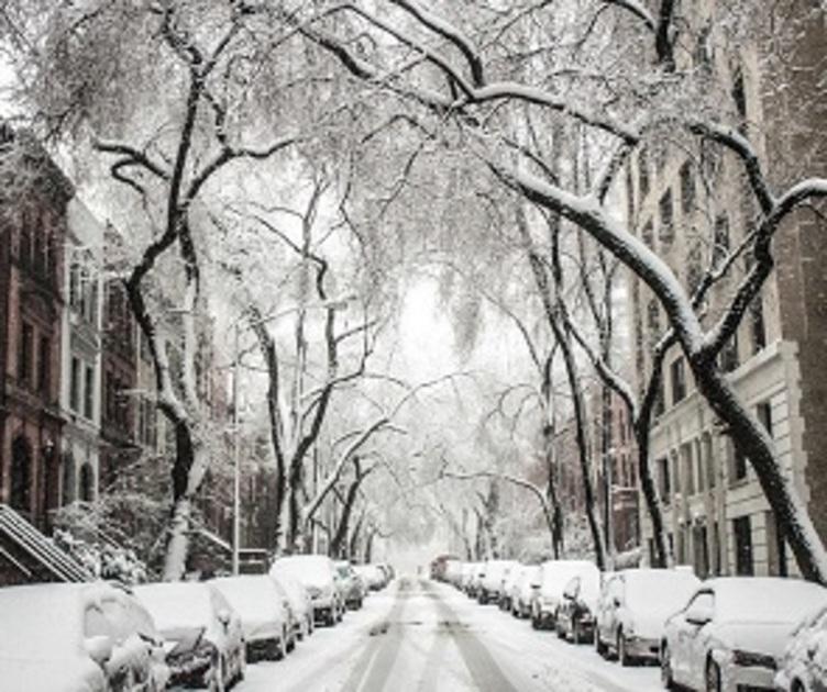 На последней неделе осени воронежцам обещают потепление и снег