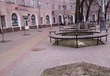 В Воронеже у вокзала спилили липы