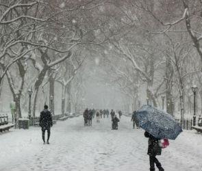 Сильный снегопад обрушится на Воронеж и область