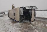 После массового ДТП с автобусом в Воронежской области завели дело