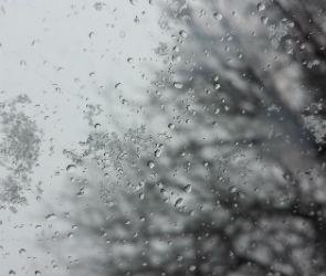 Дождь со снегом ждут жителей Воронежской области на выходных