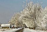 В Воронежской области изменили названия 66 населенных пунктов