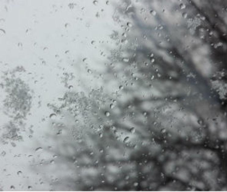 Аномальное тепло продержится в Воронеже всю следующую неделю