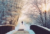 Аномальное тепло, снег и дождь ожидаются на рабочей неделе в Воронеже