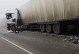 В ДТП с автобусом, легковушкой и фурой на воронежской трассе погибли 5 человек