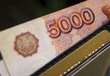 Жительница Воронежа лишилась денег, пытаясь попасть на новогоднее представление