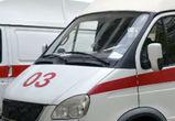 В Воронежской области в массовой аварии пострадали два человека