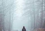 Теплая и пасмурная погода ожидается в Воронеже на неделе