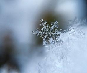 На выходных в Воронежской области ударят морозы