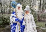 Парад Дедов Морозов в Воронеже собрал больше 2 тысяч человек – фото