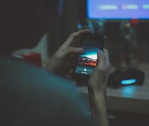 Воронежцам рассказали о популярном предновогоднем онлайн-мошенничестве