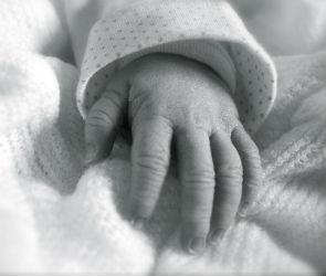 В воронежской квартире обнаружили тело двухмесячной девочки