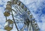 Парк аттракционов может появиться в Воронежской области