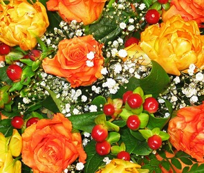 Лучший подарок для девушек – цветы
