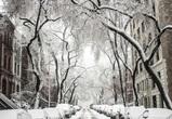 Снежные и морозные выходные ожидаются в Воронежской области