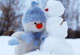 Снежную и теплую погоду обещают воронежцам на рабочей неделе