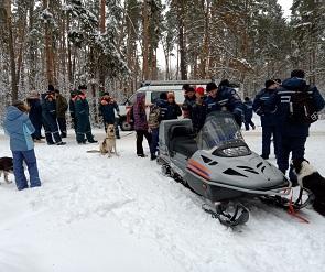В Воронеже десятки волонтеров вышли на поиски пропавшего чиновника