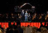 80,5 млн рублей собрали на губернаторском Рождественском вечере в Воронеже