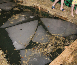 Крещенские купания в Воронеже 2020