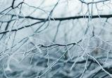 Из-за вторжения арктического воздуха в Воронеж и область придут морозы