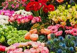 «РВК-Воронеж» оштрафовали на 36 млн рублей за отключение воды магазину цветов