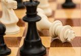 Мастер-класс по русским шахматам пройдет в Воронеже