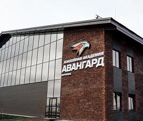 В Воронеже открылась хоккейная академия клуба «Авангард»