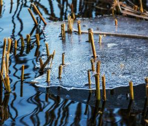 В Воронеже 3 февраля зафиксировали первый температурный рекорд года
