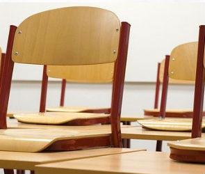 Воронежские школьники со вторника уйдут на внеплановые каникулы
