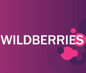 В Воронежской области может появиться логистический центр Wildberries