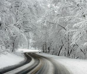 В ГИБДД попросили воронежских водителей быть осторожнее на заснеженных дорогах