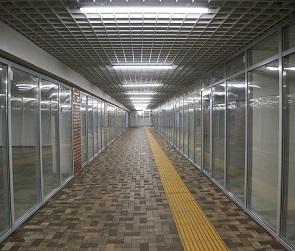 В Воронеже после реконструкции открылся подземный переход у цирка
