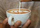 Воронежская сеть кофеен Perfetto Caffe заходит в Москву