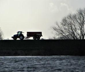 Шесть плотин и дамб отремонтируют в Воронежской области до конца года
