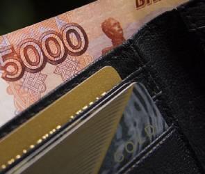 Аналитики назвали пятерку самых высокооплачиваемых вакансий февраля в Воронеже