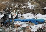 Воронежцы просят власти ликвидировать свалки на территории «зеленого щита»