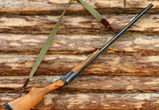 Охоту на птиц в Воронежской области разрешат с 21 марта