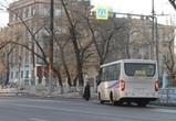 На четной стороне улицы Героев Стратосферы в Воронеже появится остановка