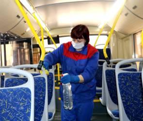 В Воронеже продезинфицируют автобусы и наденут на водителей маски