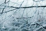 На выходных в Воронежскую область вернутся морозы и снег
