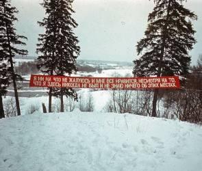 Воронежцев позвали на выставку в галерею «Дай пять»