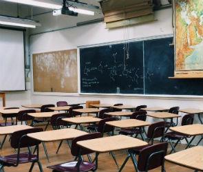 Воронежские школы досрочно отправили на каникулы из-за коронавируса